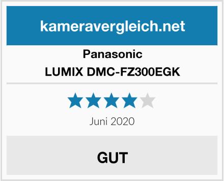 Panasonic LUMIX DMC-FZ300EGK Test