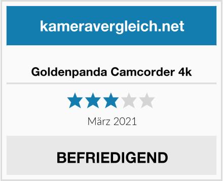 Goldenpanda Camcorder 4k Test