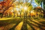 So gelingen schöne Landschaftsaufnahmen – mit der Digitalkamera Treffer landen